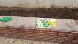 Egypt Gardening 101
